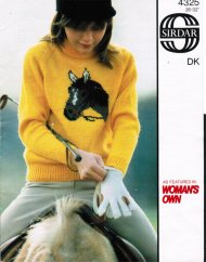 Children's pony or horse picture jumper